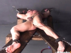 Teen Jocks In Bondage Spunk Hard After Bdsm Raw Drilling & Spanking