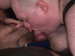 Bama Barecub, Hung Wulf and Terry Cub - Part 1 - BearFilms