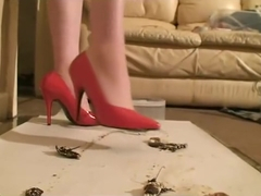 red shoes crush roaches