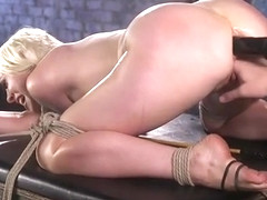 Lorelei Lee Submits