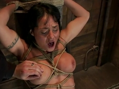 Hot sexy Hawaiian is bound to a pole, lifted to her tip toes with a brutal crotch rope. Made to cum!