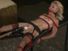 Cameron Canada - Camerons Quest - Perfect slave