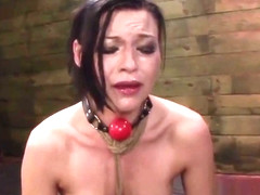 BDSM Indignity For Teen Nikki Bell