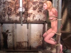 A Sub Girl With Anal Hook Gets Hogtied And Vibed To Orgasm By Master With Ally And Ally Ann
