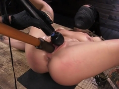 hog tied 181122 kissa sins