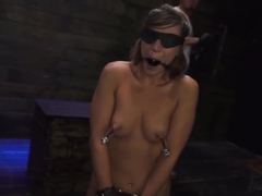 Slave Drinks Mistress Piss Xxx Last Night, Kaylee Banks Went