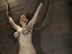 19yr old with huge natural tits is suspended to a wallher breasts are tied to hold up her legs.