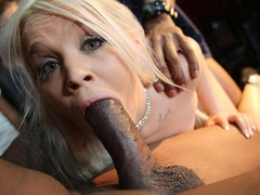 Bella Jane - DogFartNetwork