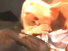 Hot Blondes Strapon Orgasm