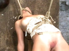 Delightful Mae Meyers performing in BDSM action