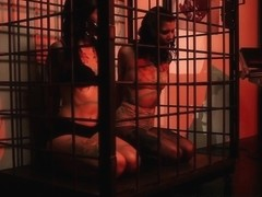 Hot Dancers Macy Cartel & Miss Luminous Ballbust for Castration a Peeping Tom