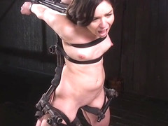 Babe in device bondage caned in doggy