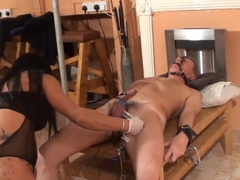Spasm and Rip Cock and Ball Torture