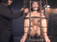 Sub clamped and vibed in bird cage