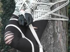 Best xxx video Hogtied hottest just for you