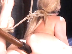 Blonde hogtied and fucked with dick on a stick