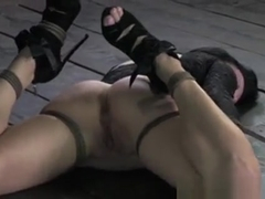Bdsm Sub Beautie Veruca James Flogged
