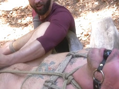 Max Cameron in Hard Woods: Max Cameron Suspended and Tormented in California Redwoods - BoundGods