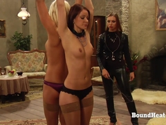 The Education of Erica: Adela As Dominant Mistress In Reverse Roleplaying
