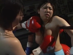 SD Japanese Catfight Boxing