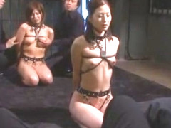 Best Japanese chick Pine Shizuku, Maya Maino, Kuroki Ichika in Hottest BDSM, Blowjob JAV scene