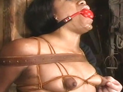 Enticing Sydnee Capri in hot BDSM scene