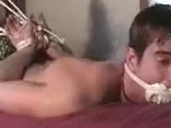 Best male in amazing bdsm, fetish homo sex video