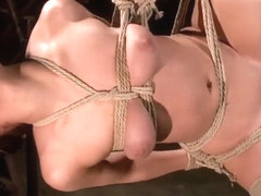 Chained Up Ass Fucked