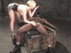 Beauteous Adrianna Nicole performing in BDSM video