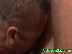 Two gay bears sucking dick close up