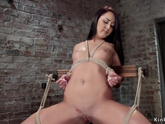 Brunette in suspension gets bastinado
