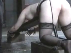 Pierced Sub Tiedup And Spanked With Belt