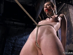 Shaved brunette crotch roped and hogtied