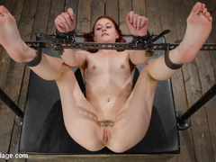 Fresh Meat: Rosalyn Sphinx - DeviceBondage