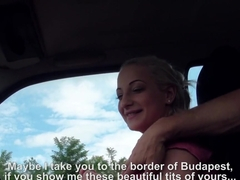 Brooke Anastasia Blonde Takes A Free Ride